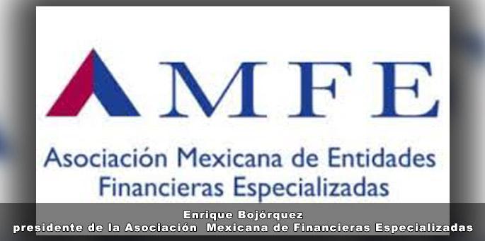 Se necesitan medidas a largo plazo para enfrentar la crisis: AMEF